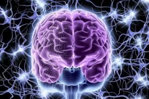 bionic-brain